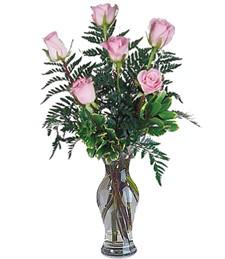 Half-Dozen Pink Roses
