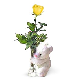 One Perfect Rose & Bear